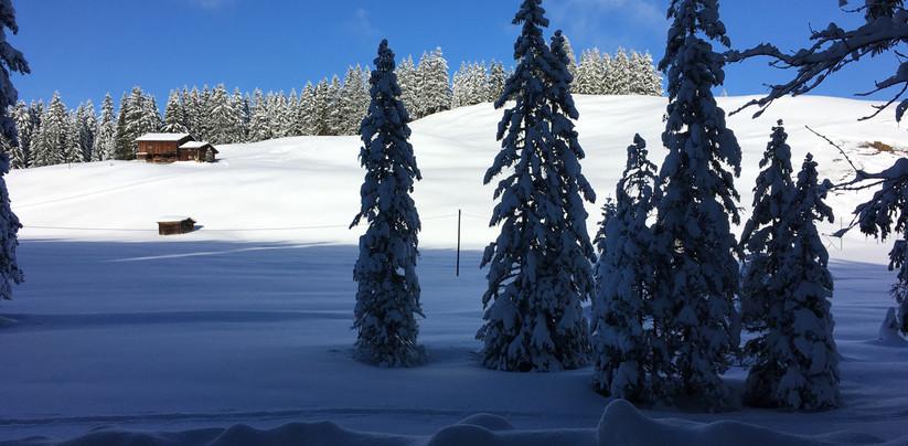 Schneeschuhtour Furna 2019-12 (11).jpg