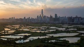 Xiong'an, Xi Jinping's new city-making machine turned on