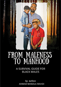 This book addresses the transition from boyhood into manhood and what it means to be black and male in America...