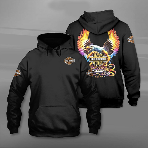 OFFICIAL-HARLEY-DAVIDSON-PULLOVER-HOODIES/3D-CUSTOM-GRAPHIC-PRINTED-DOUBLE-SIDED