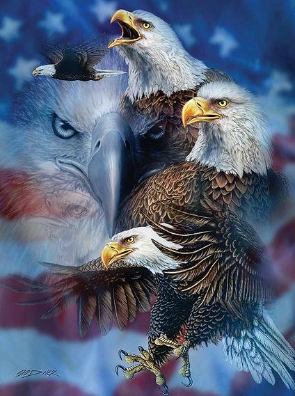 46530patrioticeaglescat.jpg.jpg