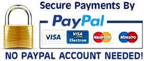 secure-paypal-logo-png-14.png.png