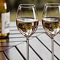 WillaKenzie Estate Pinot gris (Grigio), OR (USA) - Pinot Grigio