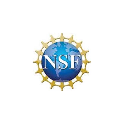 eaglepoint-customer-logos-nsf.png