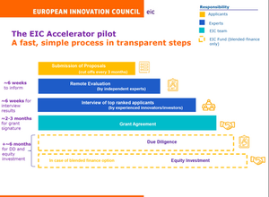 5 KEY facts on Accelerator Pilot (blended finance) Equity investment