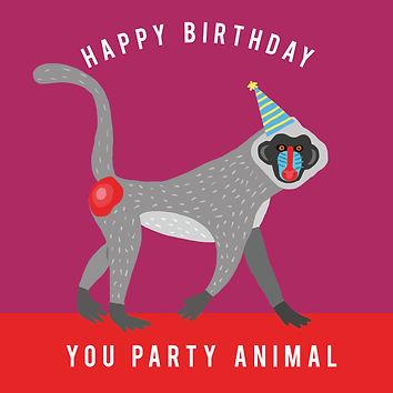Birthday Monkey.jpg