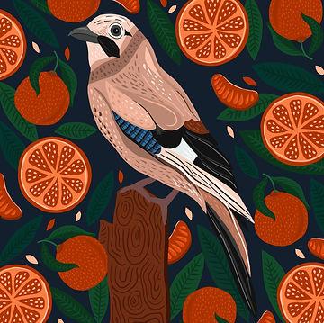 Jay & Oranges.jpg