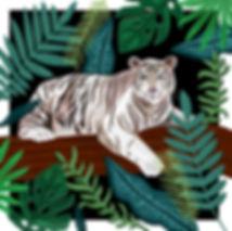 White Siberian Tiger.jpg