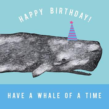 Whale Birthday.jpg