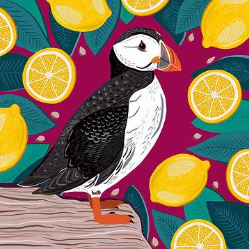 Puffin_&_Lemon.jpg