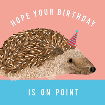 Birthday Hedgehog.jpg
