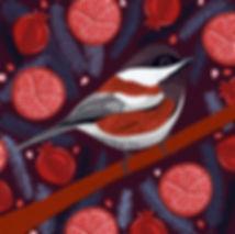 Chickadee & Pomegranates