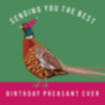 Birthday Pheasant.jpg