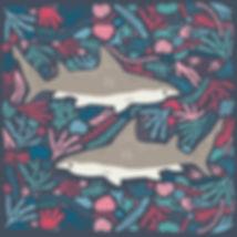 Folk Sharks.jpg