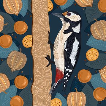 Woodpecker_&_Cape_Gooseberry_.jpg