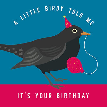 Birthday Bird.jpg