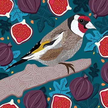 Goldfinch & Figs.jpg
