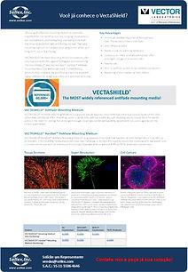 VectaShield - Vector - JPEG.jpg