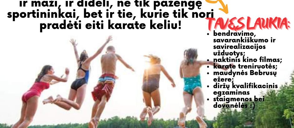 TOSHI VASAROS STOVYKLA'21