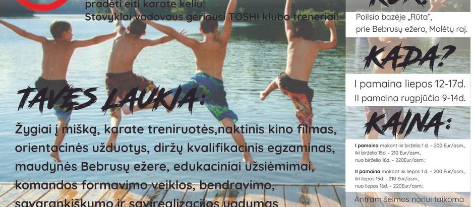 TOSHI VASAROS STOVYKLA '20