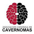 Cavernomas