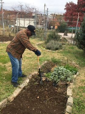 Bobby preparing a bed for planting.