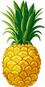 Pineapple Vector.png