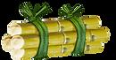 Sugarcane Vector.png