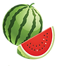 Watermelon Vector.png