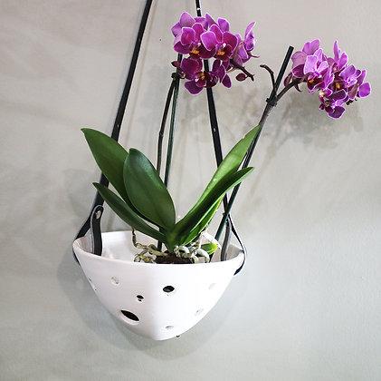 Pot pour Epiphytes Suspendu Cuir Noir