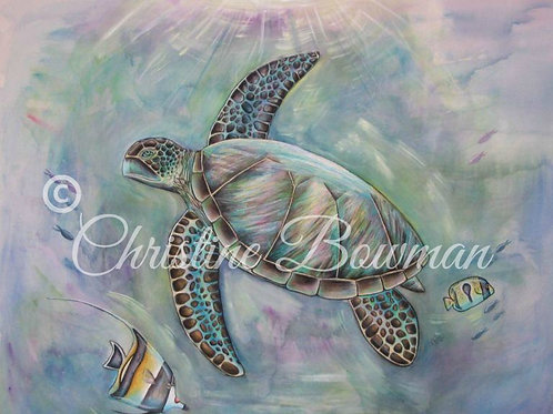 Sea Turtle Dreams