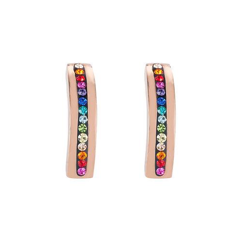0226-21-1500 Coeur de Lion oorstekers multicolor