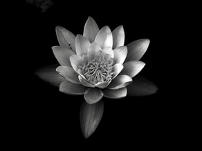 4 tips for a successful black and white photo