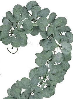 Silver Dollar Eucalyptus Garland Muted G