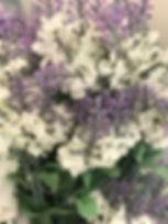 Lavender Stem White & Lavender.JPG
