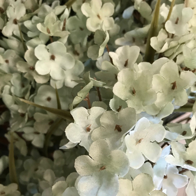 Baby's Breath - Sage Green