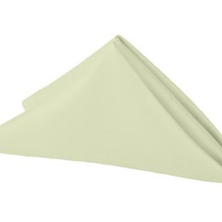 Polyester Napkin Silver Sage