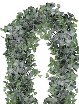 Frosted Boxwood Garland
