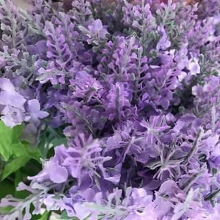 Lavender Stem - Lavender