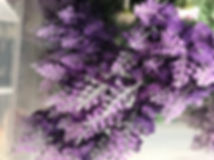 Lavender Stem Dark Purple.JPG