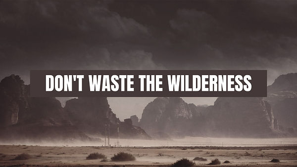 DON'T WASTE THE WILDERNESS.jpg