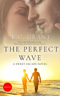 The Perfect Wave jpg.jpg