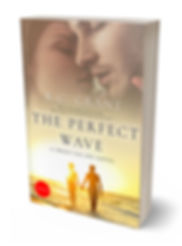 The Perfect Wave book 3D.jpg