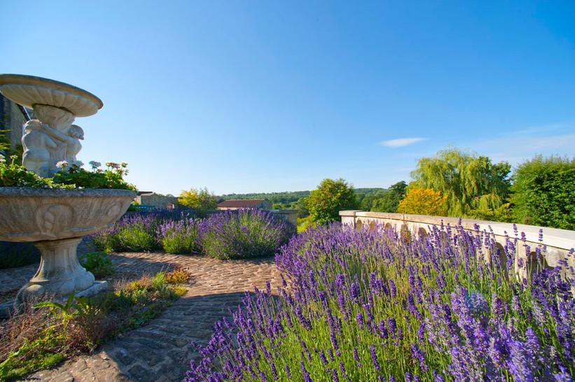lavender-circular-garden_FLA8297.jpg