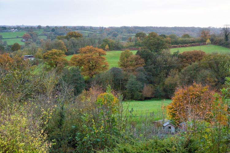 Vobster Farm. Autumn-69.jpg
