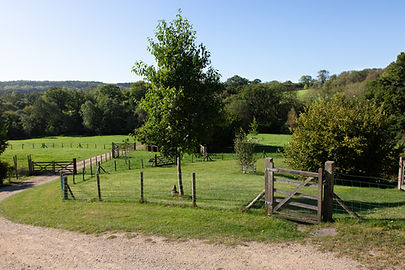 Vobster Farm. Sept 2020-273.jpg