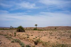 Maroc, Ouarzazate