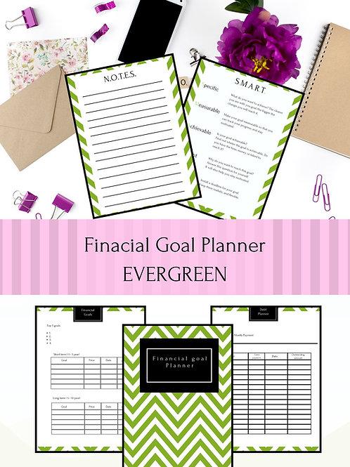 Financial Goal Planner  - Evergreen