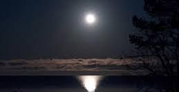 Poppy Moon