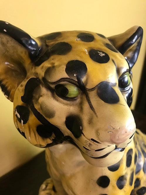 Leapard cub